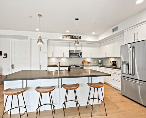 Gourmet Designer Kitchen
